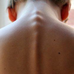 spinal-column-246273_1920 (3)